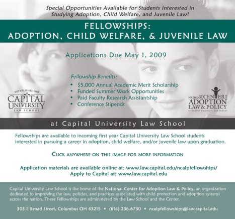Law School Fellowship